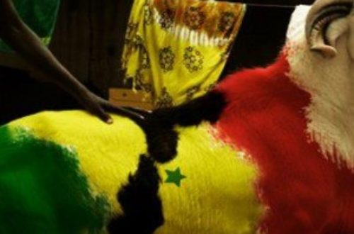 Article : Tabaski au Sénégal : un  mouton à tout prix