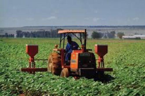 Article : Sénégal: La Chine organise un colloque international sur l'agriculture